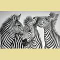 Набор алмазной вышивки АЛМАЗНАЯ ЖИВОПИСЬ «Зебры»