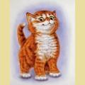 Набор алмазной вышивки  АЛМАЗНАЯ ЖИВОПИСЬ «Важный кот»