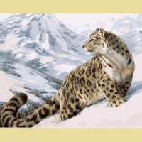 """Картина по номерам PAINTBOY """"Леопард"""""""