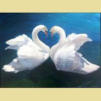 """Картина по номерам PAINTBOY """"Лебеди"""""""