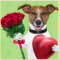 Набор алмазной вышивки АЛМАЗНАЯ ЖИВОПИСЬ «Пес с букетом» АЖ-1308