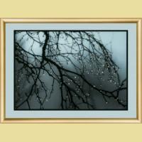 """Набор картины со стразами ЧАРИВНА МИТЬ  """"После дождя"""""""
