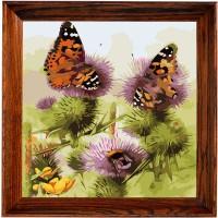 "Открытка по номерам COLOR KIT  ""Бабочки и шмели"""
