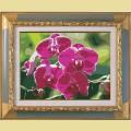 """Картина со стразами COLOR KIT """"Ветка орхидеи"""""""