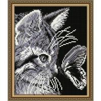 Алмазная вышивка Кот с бабочкой