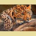 Набор алмазной вышивки АЛМАЗНАЯ ЖИВОПИСЬ «Леопард»