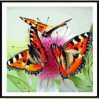 "Картина по номерам COLOR KIT ""Бабочки на цветке"""